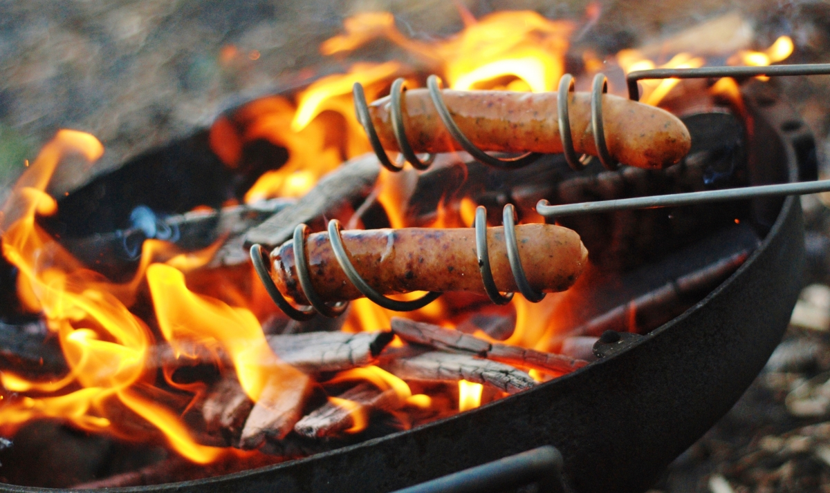 Curly Dog Roasting Sticks